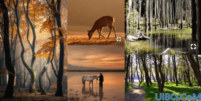 插画制作,用Photoshop制作一只梦幻的小鹿插画