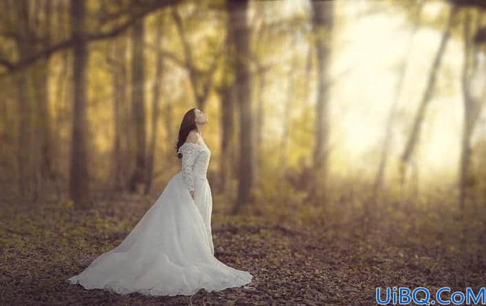 婚纱后期,快速打造唯美秋季外景树林婚纱照片