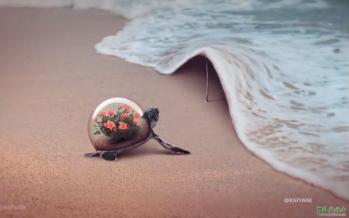 Photoshop创意合成小海龟走进掀开被子效果的海浪中,回家的海龟