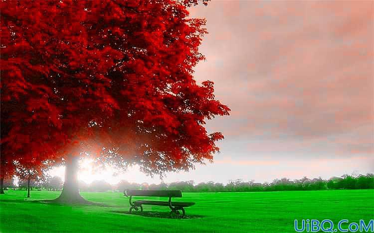 Photoshop风景照调色教程:利用LAB模式把绿色枫树照片变成火红的效果。